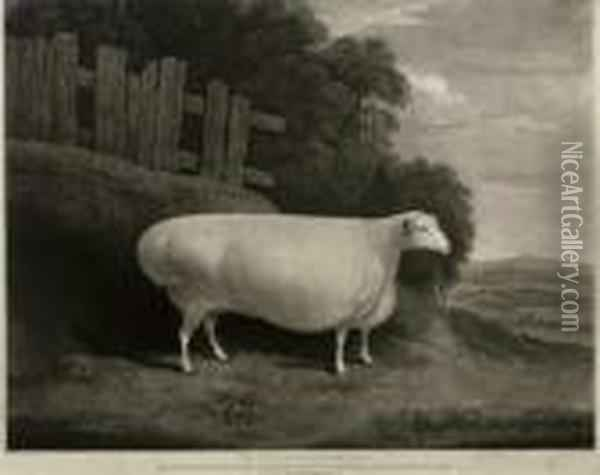The Worcestershire Ewe Oil Painting - Joseph Mallord William Turner