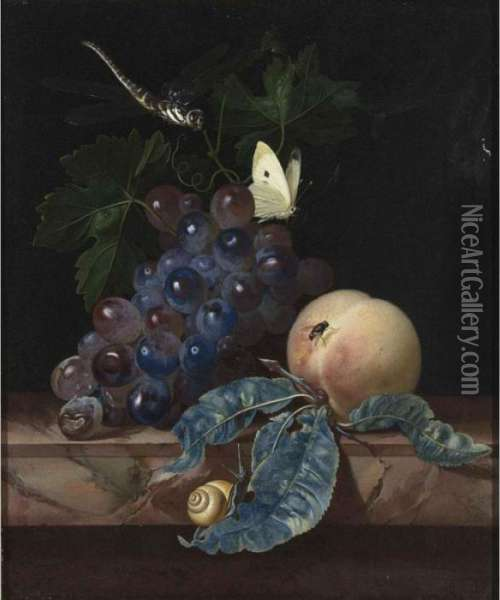 A Still Life With Grapes, A 