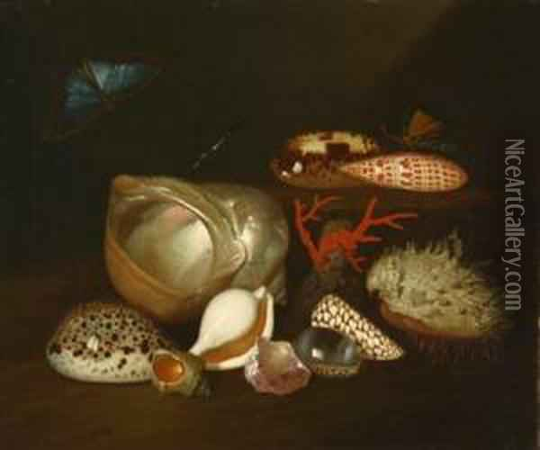 Still Life With Insects And Shells Oil Painting - Balthasar Van Der Ast