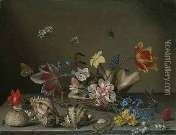 A Still Life Of Flowers  Contained Within A Shell On A Ledge, With Scattered Shells And Lizard  Beside It. Oil Painting - Balthasar Van Der Ast