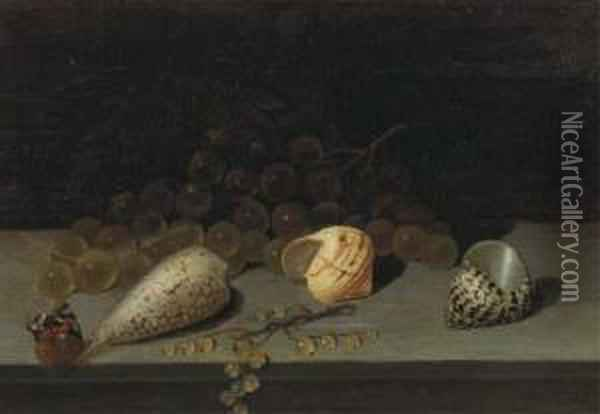 Shells, A Brunch Of White Grapes, White Currants And A Butterfly Ona Ledge Oil Painting - Balthasar Van Der Ast