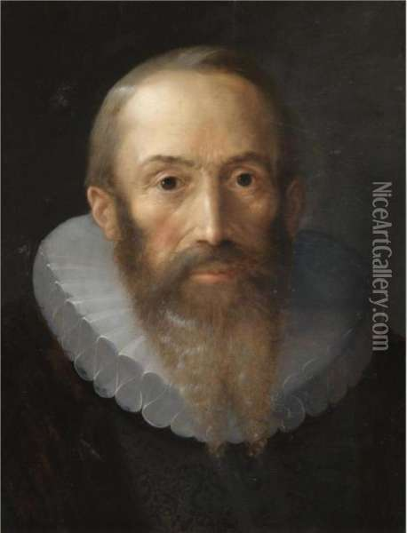 Portrait Of A Bearded Gentleman, Bust Length, With A White Ruff Oil Painting - Hans Von Aachen