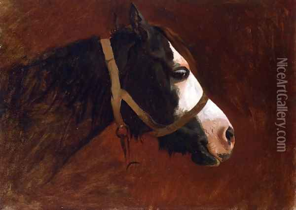 Profile of a Horse Oil Painting - Jean-Leon Gerome