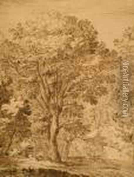 Study Of Trees Before A Wall Oil Painting - Jan Wildens
