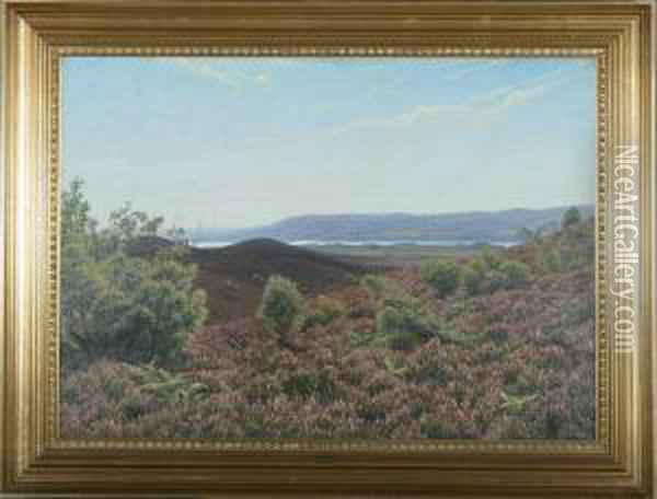 A View To Himmelbjerget Oil Painting - Emil Winnerwald