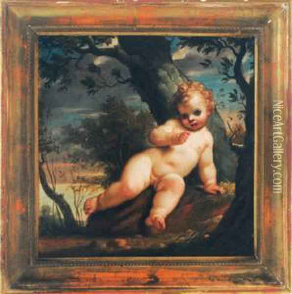 A Putto In A Forest Oil Painting - Francesco Albani