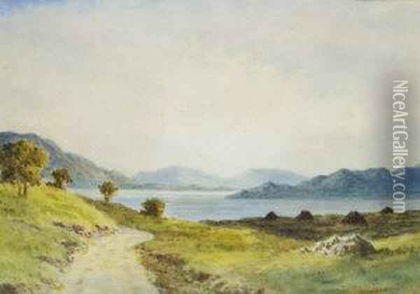On Lough Corrib, Co. Galway Oil Painting - Douglas Alexander