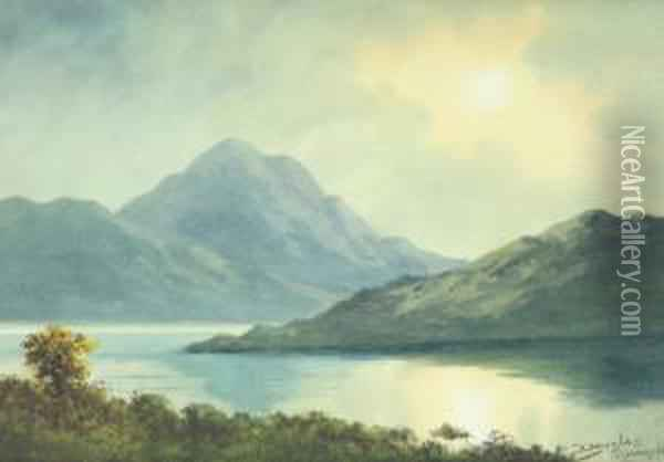 Evening In Donegal Oil Painting - Douglas Alexander