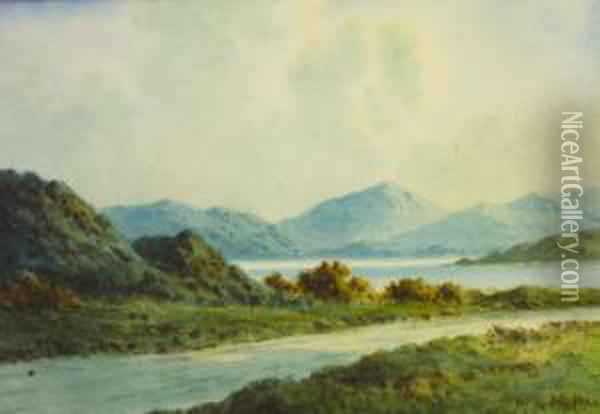 On The Road To Killorglin, Co Kerry Oil Painting - Douglas Alexander