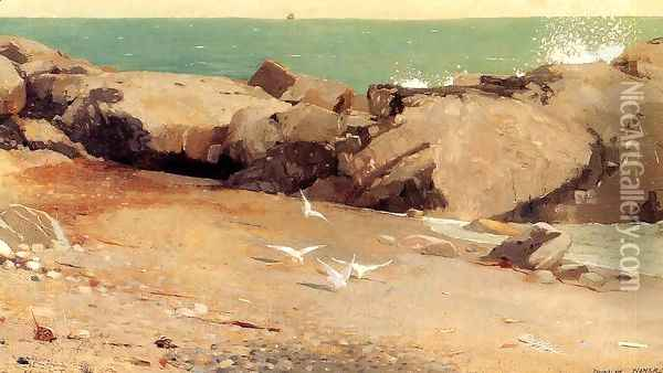 Rocky Coast and Gulls Oil Painting - Winslow Homer