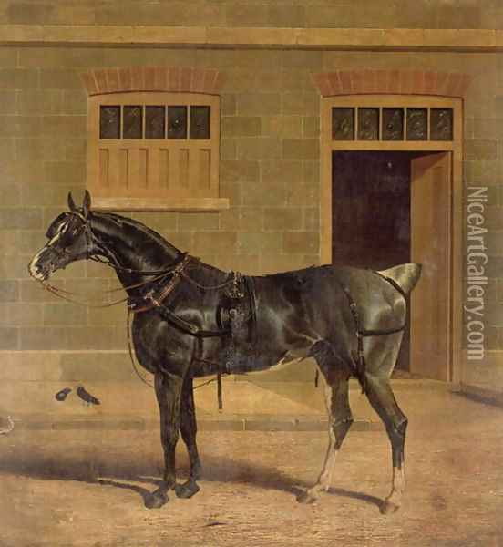 A Carriage Horse in a Stable Yard Oil Painting - John Frederick Herring Snr