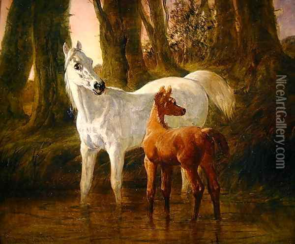Mare and Foal startled while watering in a Stream, 1854 Oil Painting - John Frederick Herring Snr