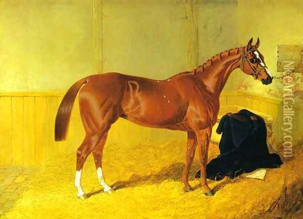 Our Nell, A Bay Racehorse in a Stable Oil Painting - John Frederick Herring Snr