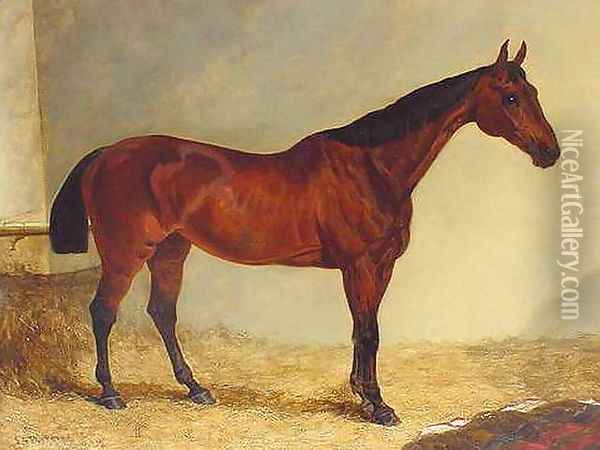 Gypsy, Bay Horse in a Stable Oil Painting - John Frederick Herring Snr