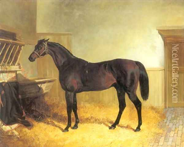 Charles XII a Brown Racehorse in a Stable Oil Painting - John Frederick Herring Snr