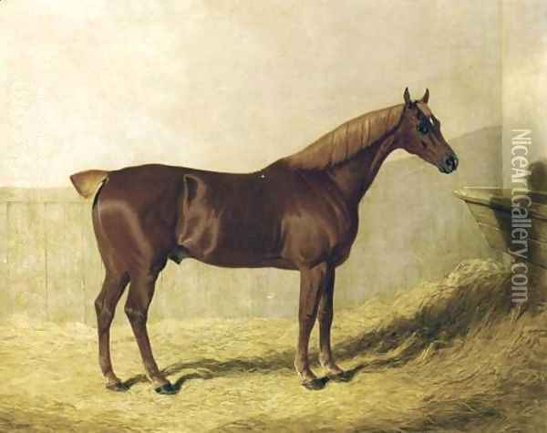 A Chestnut Horse in a Stable Oil Painting - John Frederick Herring Snr