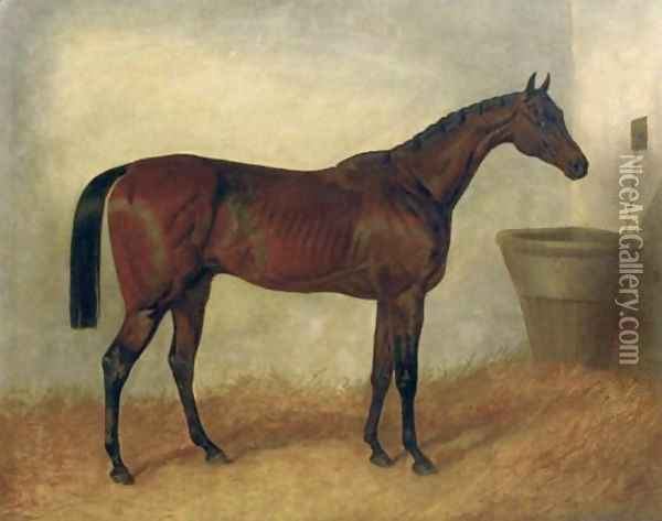 Merry Monarch A Bay Mare In a Stable 1845 Oil Painting - John Frederick Herring Snr