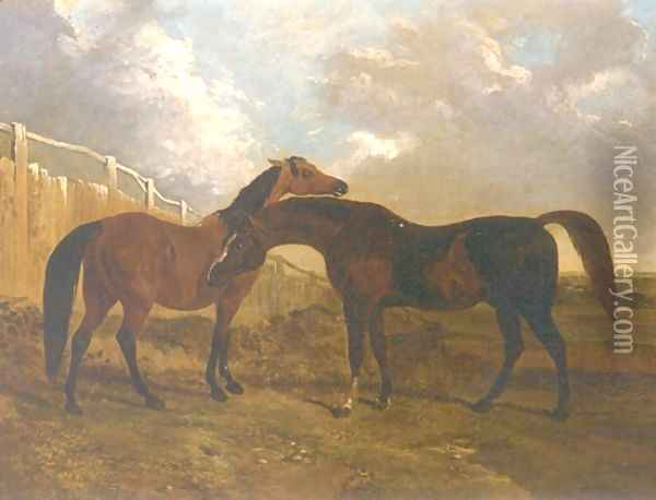 Languish and Pantaloon Two Horses in Landscape Oil Painting - John Frederick Herring Snr