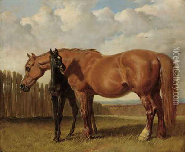 A chestnut mare with her foal in a paddock Oil Painting - John Frederick Herring Snr