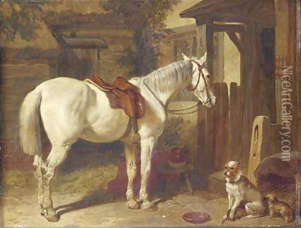 A saddled grey pony and dogs outside an inn Oil Painting - John Frederick Herring Snr