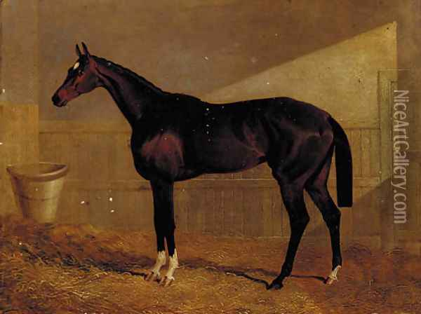 Lucetta, a bay racehorse in a stable Oil Painting - John Frederick Herring Snr