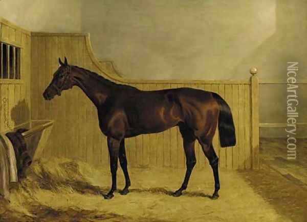Mr Ridsdale's Bloomsbury, winner of the 1839 Derby, in a stable Oil Painting - John Frederick Herring Snr