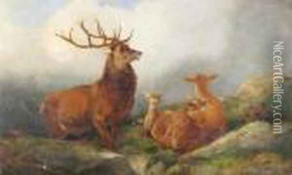 A Stag And Family In The Highlands Oil Painting - Richard Ansdell