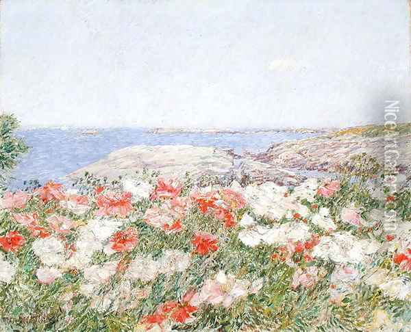 Poppies on the Isles of Shoals, 1890 Oil Painting - Childe Hassam