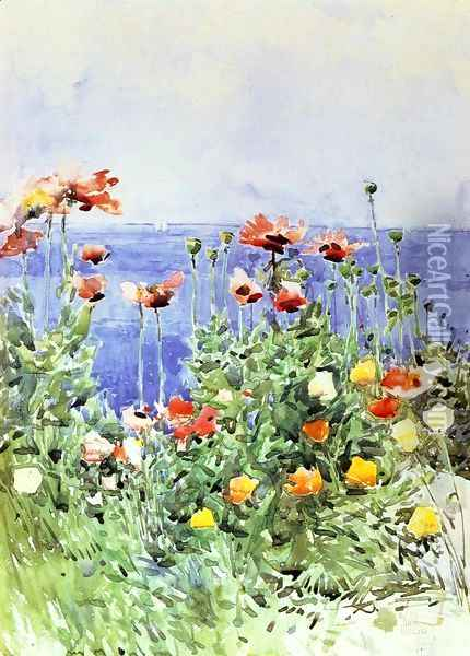 Poppies, Isles of Shoals 2 Oil Painting - Childe Hassam