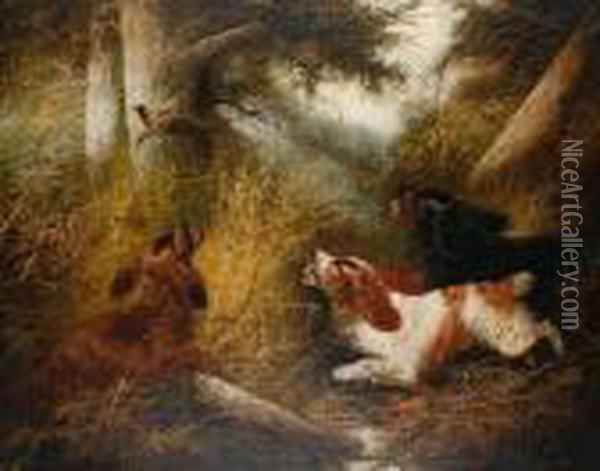 Spaniels Putting A Pheasant Up Oil Painting - George Armfield