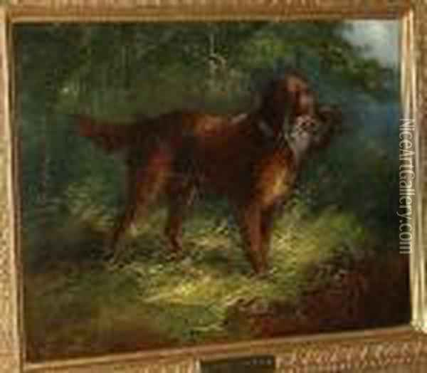 Gun Dog With A Partridge Oil Painting - George Armfield