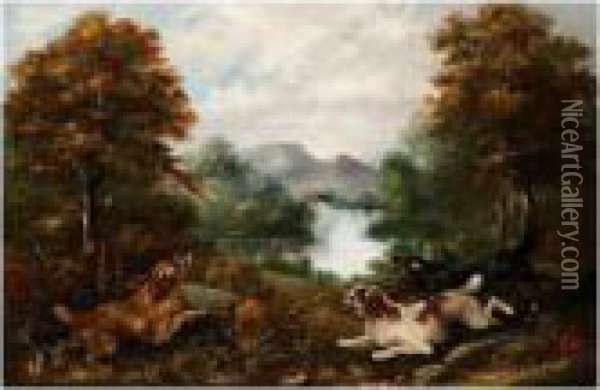 Flushing A Pheasant Oil Painting - George Armfield