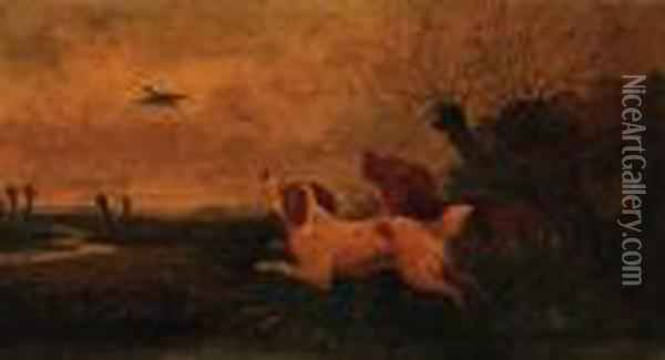 Spaniels Flushing Out A Mallard Oil Painting - George Armfield