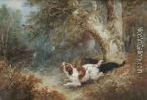 Flushing Pheasant Oil Painting - George Armfield