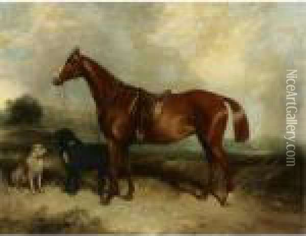 A Chestnut Horse And Two Dogs In A Landscape Oil Painting - George Armfield