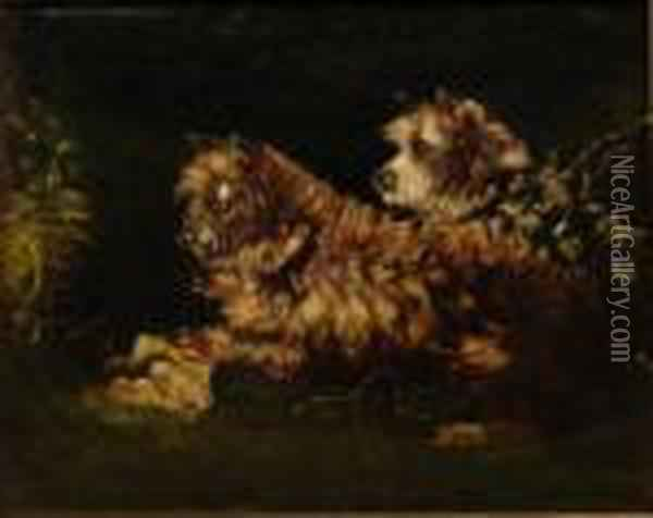 A Pair Of Long Haired Terrriers Oil Painting - George Armfield