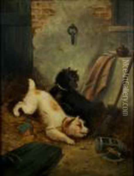 Two Terriers Ratting Oil Painting - George Armfield