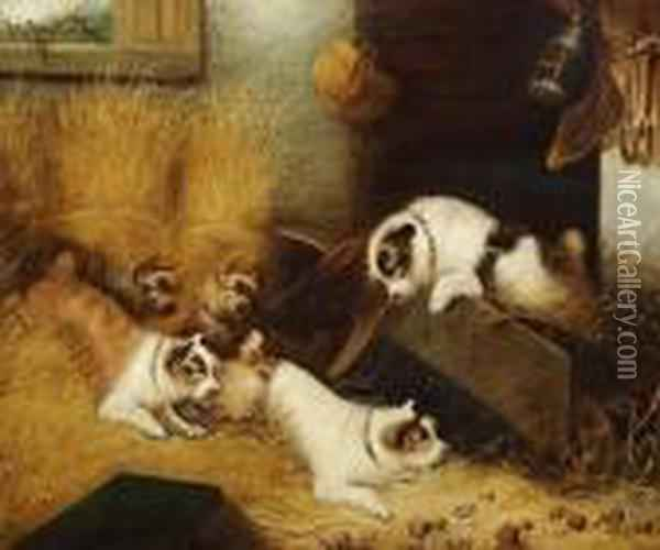 Five Dogs Playing In A Stable Oil Painting - George Armfield