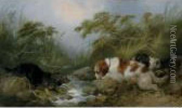 Three Dogs By A Brook Oil Painting - George Armfield