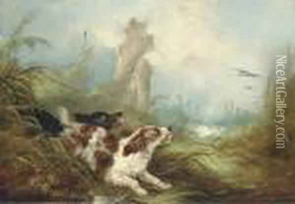 Spaniels Flushing Out Mallards Oil Painting - George Armfield