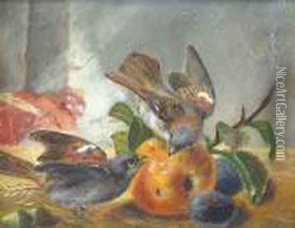 Chaffinches With An Apple And Plums Oil Painting - Charles Thomas Bale