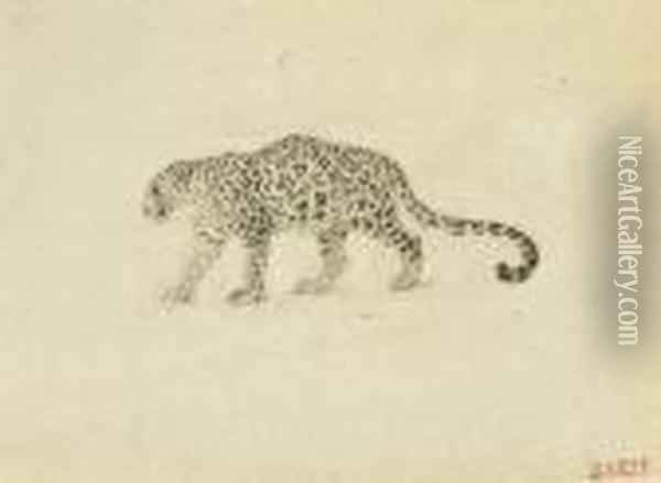 Study Of A Leopard Oil Painting - Antoine-louis Barye
