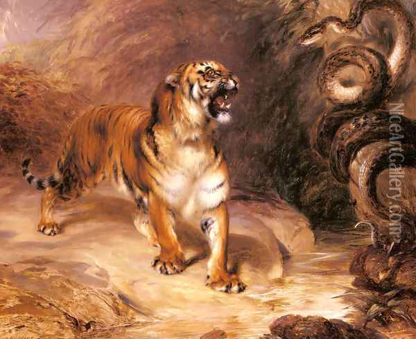 A Tiger and a Serpent Oil Painting - William John Huggins