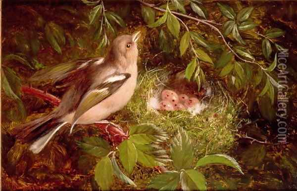 A Chaffinch at its Nest Oil Painting - William Hughes