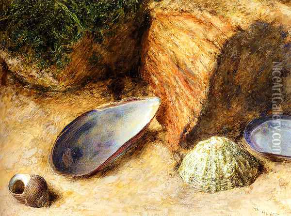 Still Life With Sea Shells On A Mossy Bank Oil Painting - William Henry Hunt
