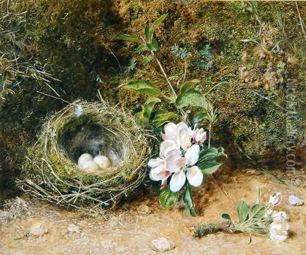 Birds Nest with Sprays of Apple Blossoms Oil Painting - William Henry Hunt
