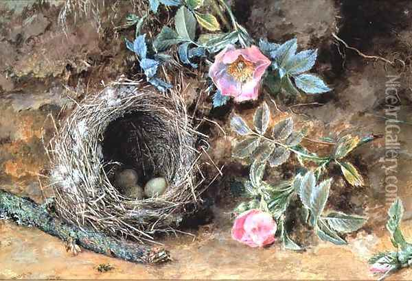Wild Roses and Birds Nests Oil Painting - William Henry Hunt