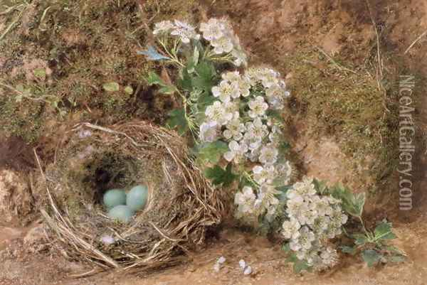 May Blossom and a Hedge Sparrows Nest Oil Painting - William Henry Hunt