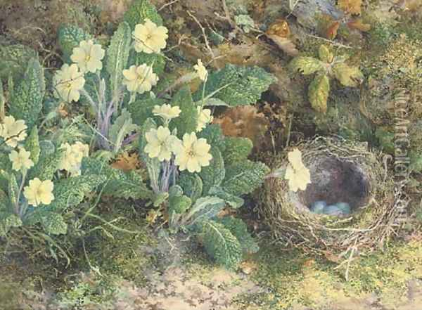 Primulas and a bird's nest on a mossy bank Oil Painting - William Henry Hunt