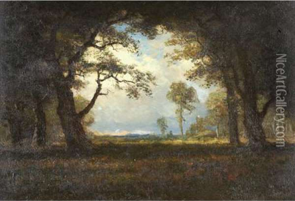 Wooded Landscape With Clearing Oil Painting - Albert Bierstadt